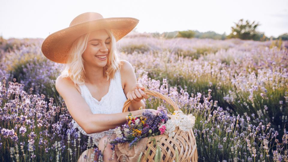 жена лято лавандула цветя природа красота