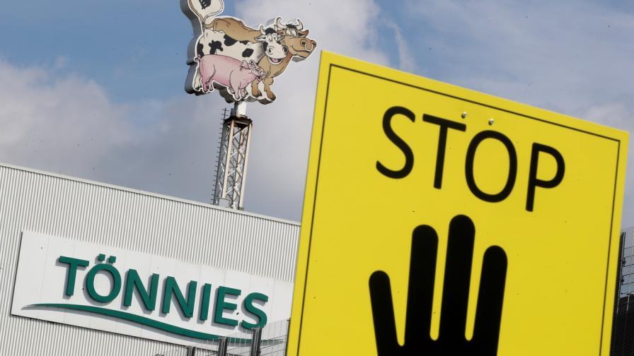 Свинщина. Насред Германия