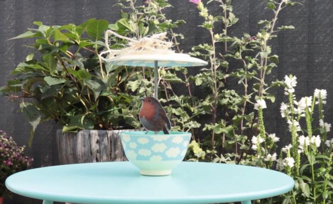 Как да си направим хранилка за птици