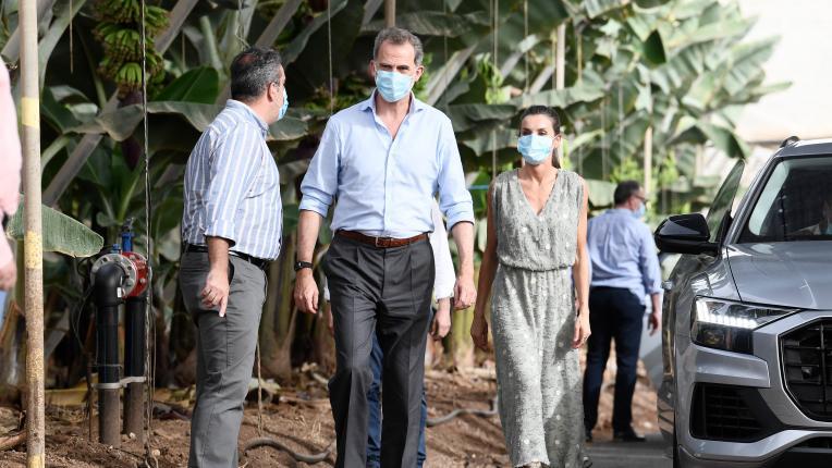 Испанската кралска двойка по време на пандемия