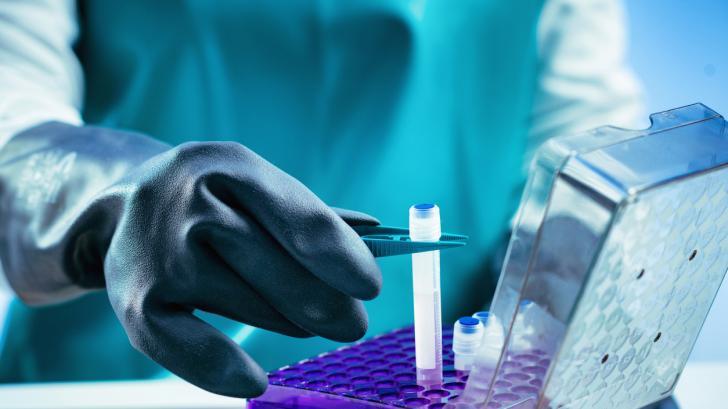 Как да изберем тъканна банка, в която да съхраним стволови клетки?