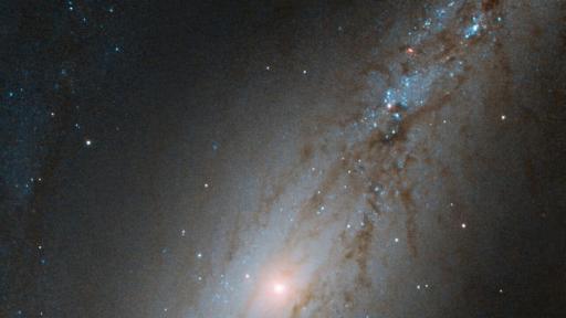 Галактиката NGC 7513
