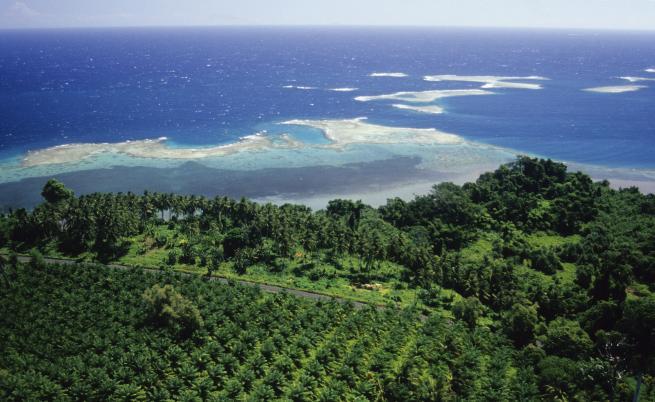Нова Гвинея