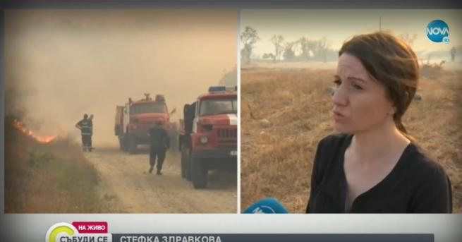 България Спасиха от огъня евакуираното село в Хасковско Все още