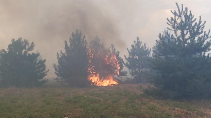 Опасност от пожари в 8 области на страната през почивните дни
