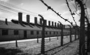 <p>Престъпните авантюри на Райнер Хьос, внук на чудовището от Аушвиц</p>