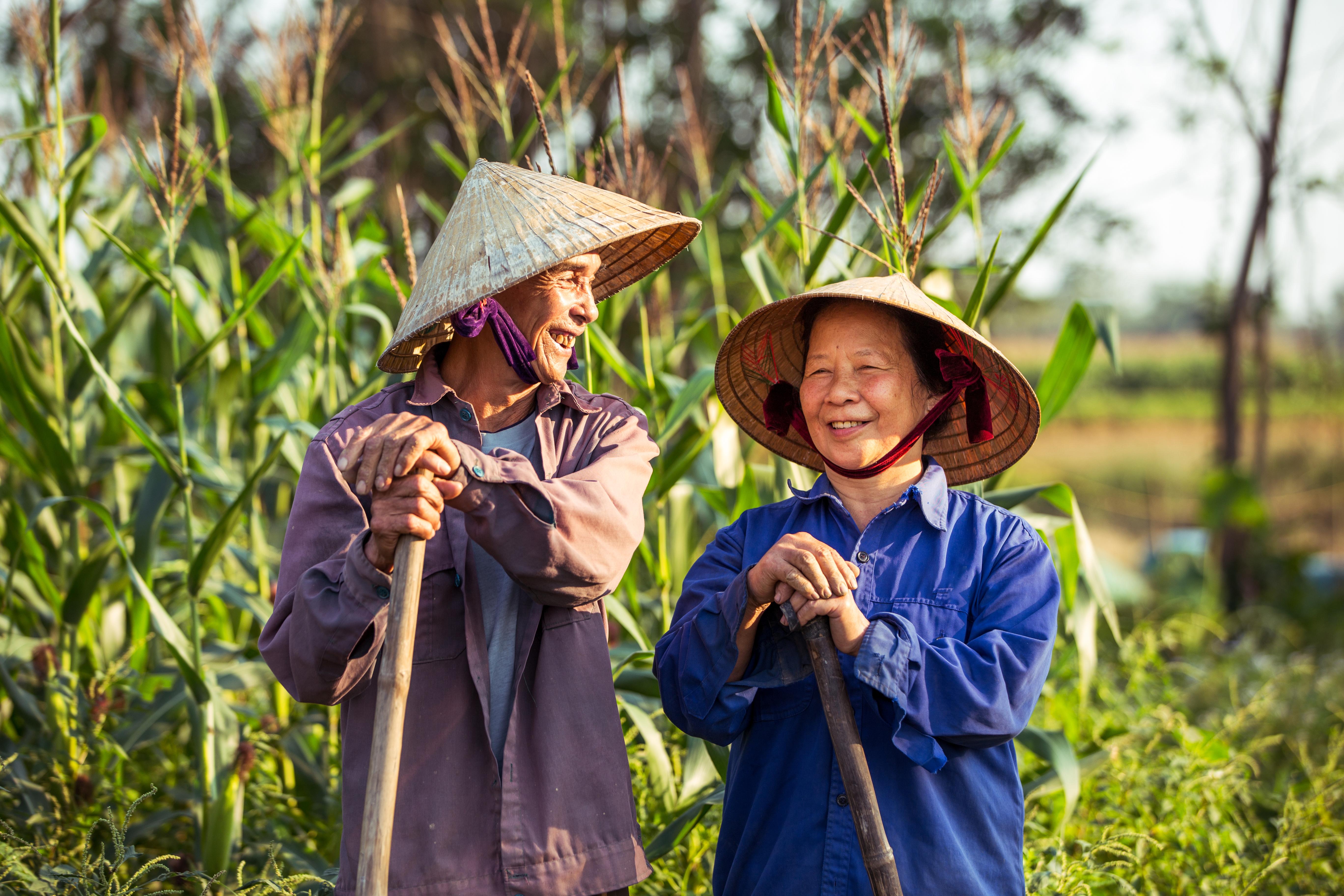 <p>3. Виетнам Тези конични шапки са известни като &bdquo;n&oacute;n l&aacute;&ldquo; и са направени от слама. Купуването на такава за сувенир, с който да украсите къщата си или за подарък, са две чудесни възможности.</p>