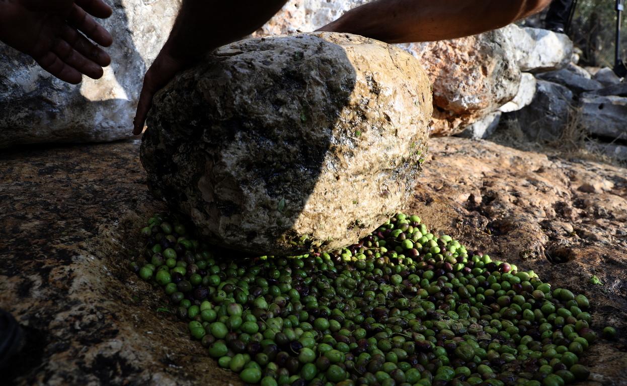 <p>Ал-Бад е смачкване на маслини инсталация, която разполага с ръчна каменна преса, използвана от стотици години, казават местните фермери</p>