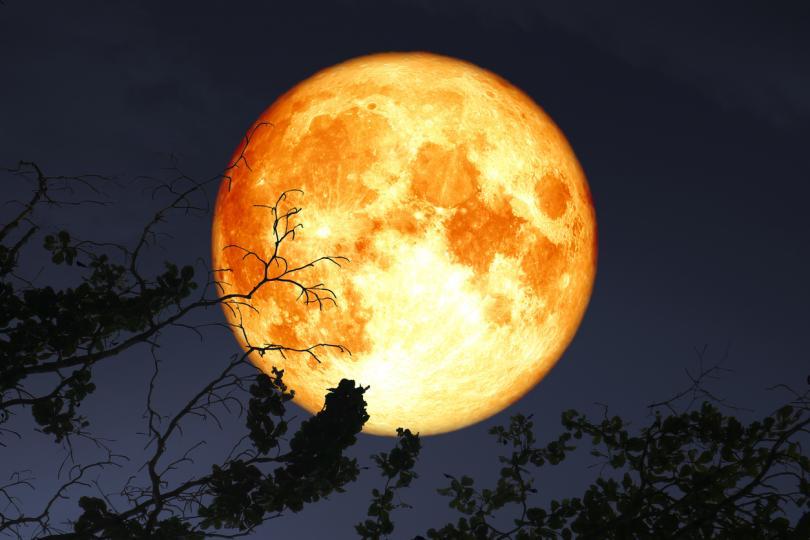 """<p><strong>24 юни &ndash; супер Луна в Стрелец</strong></p>  <p>За трети пореден месец пълнолунието се превръща в супер Луна, заради най-близкия подход на Луната до Земята. За щастие, това ще бъде последната супер Луна за 2021 година. <u><a href=""""https://www.edna.bg/astrologia/mistichna-kyrvava-luna-kakvo-da-ne-pravim-dnes-4664652"""" target=""""_blank"""">Луната отново ще бъде в Стрелец</a></u>, така че можем да очакваме повторение на събитията от миналото пълнолуние. В този лунен ден имаше <u><a href=""""https://www.edna.bg/astrologia/pylno-lunno-zatymnenie-za-kakvo-da-vnimava-vsiaka-zodiia-4664654"""" target=""""_blank"""">пълно затъмнение на Луната</a></u>, следователно на 24-ти ще се появят най-важните отрицателни последици от решенията, взети по време на затъмнението.</p>"""