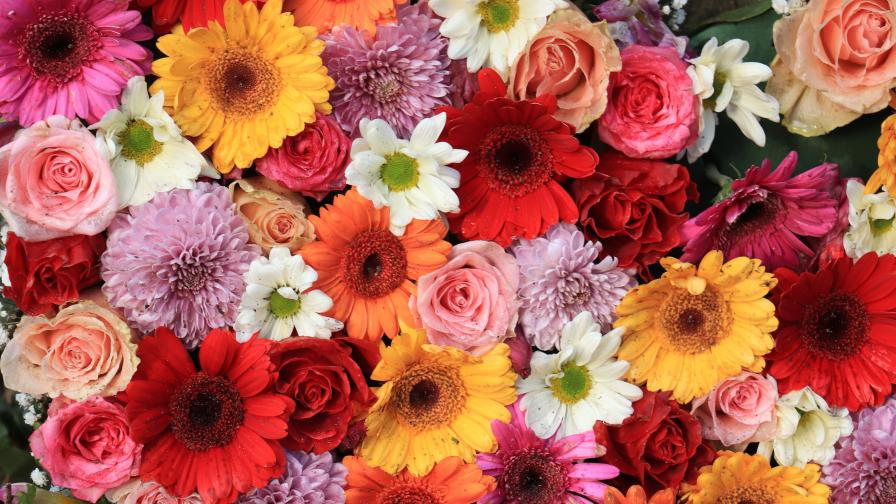 Тези цветя имат негативна символика