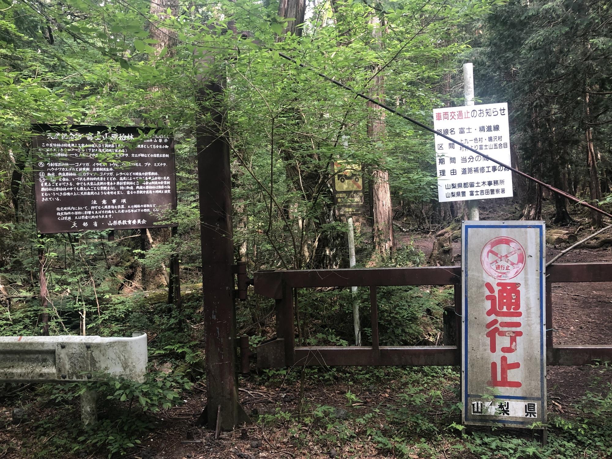 <p>Репутацията на гората може би има нещо общо с факта, че в японската митология гората отдавна се свързва с демони. Освен това там дърветата растат много плътно едно до друго, което улеснява изгубването и е трудно някой да ви чуе, дори да викате с пълно гърло.</p>