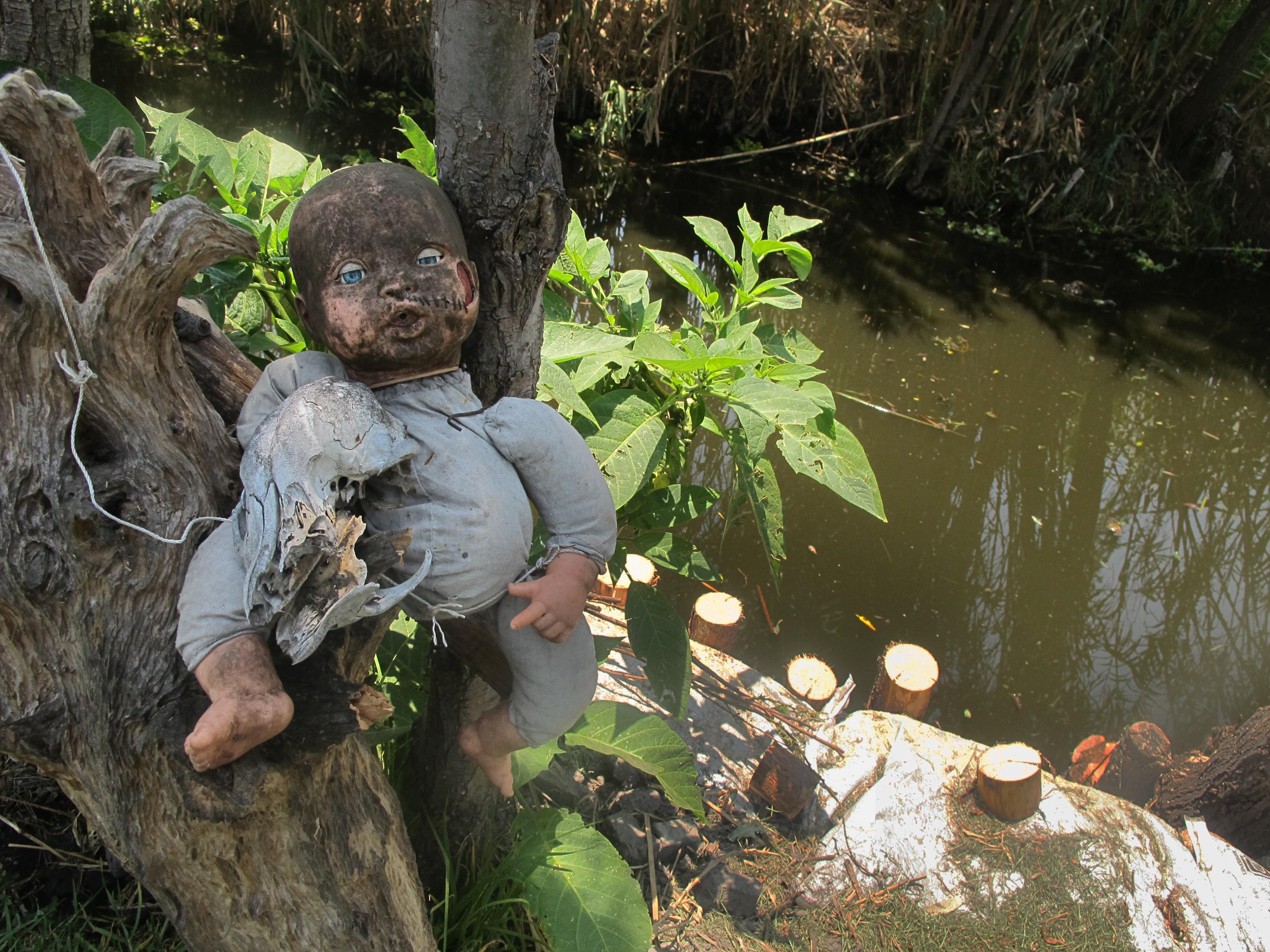<p><br /> <strong>&bdquo;Островът на куклите&rdquo; в Мексико</strong></p>  <p>Това място е обитавано от духа на младо момиче, което се е удавило там. И сякаш горите не са достатъчно страшни, тази е изпълнена с кукли, които висят от дърветата. Местната легенда разказва, че пазачът на острова е окачил първата кукла в чест на малко момиченце, което е намерил удавено на острова (смятало се, че куклата е нейна).</p>