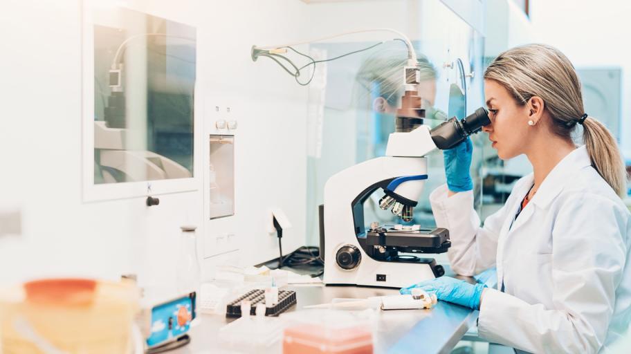 Извличане на стволовите клетки. Какво се случва в лабораторията?
