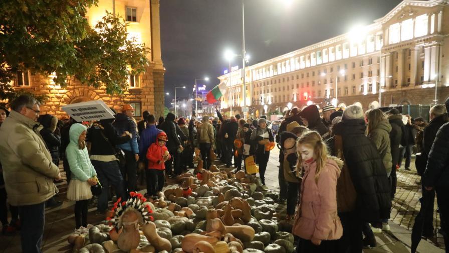 Коронавирусът спря протестите в столицата