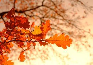 Ще има ли топли дни през октомври
