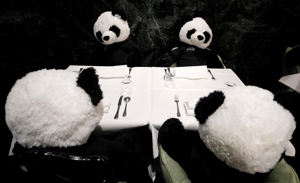 <p>Заинтересованите могат да закупят една от плюшените мечки за 150 евро, за да подкрепят собственика на ресторанта по време на пандемията на коронавируса.</p>  <p>&nbsp;</p>