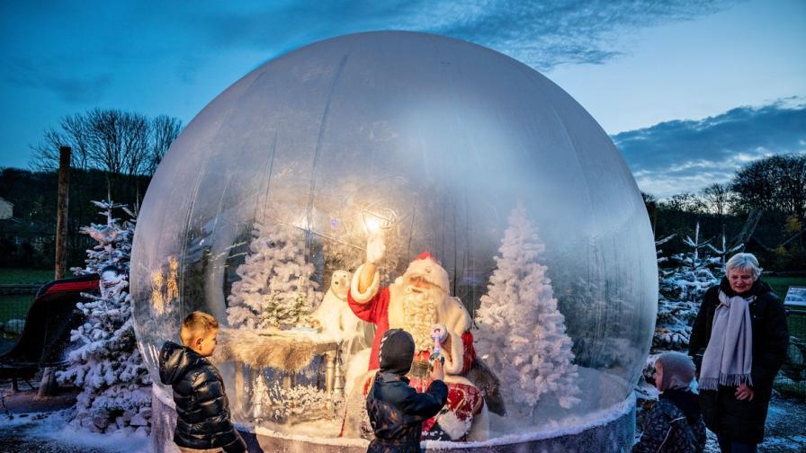 Коледното настроение завзема света въпреки...