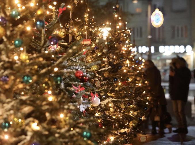 Коледната елха в София грейна без празнична програма елха коледа