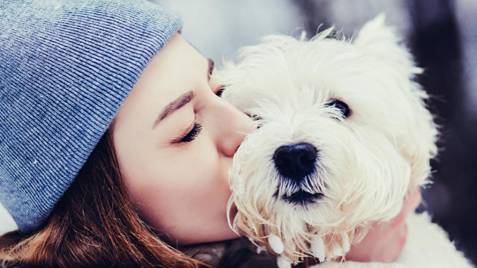 жена куче зима хороскоп