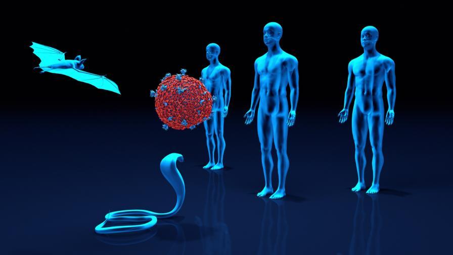 <p>Докторът, открил ебола, с плашещо предупреждение</p>