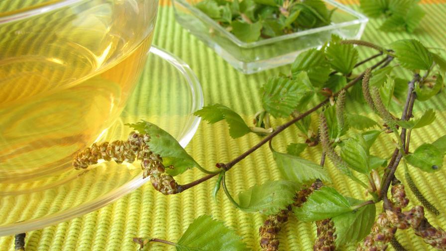 Тази билка крие невероятни ползи за здравето