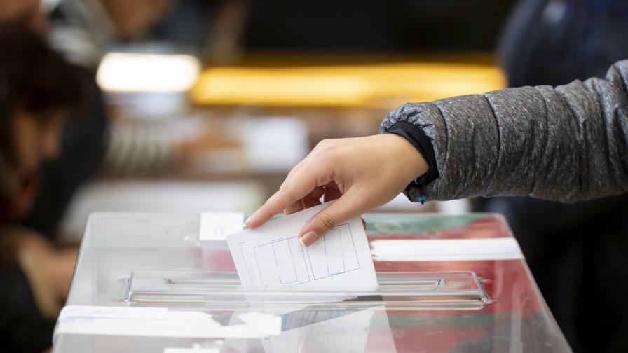 """""""Тренд"""": 8,2% е избирателната активност към 10 ч."""