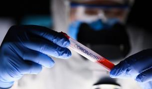 Коронавирус: Предпазва ли ни имунната система