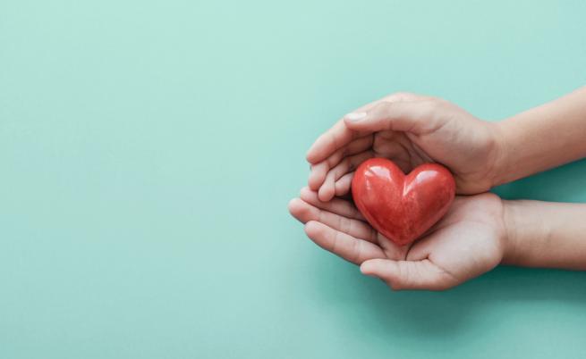 НЦТХ с апел: Дарете кръв! Подкрепете Живота!