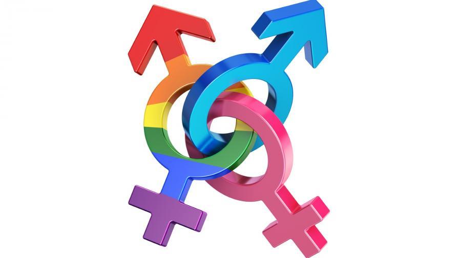 <p>Въпрос към Конституционния съд какво е пол</p>