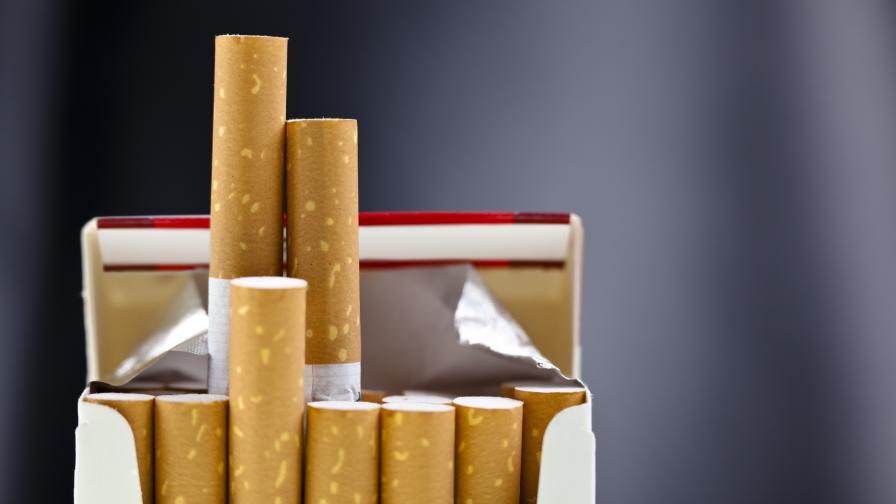 Откриха 13 милиона къса контрабандни цигари в Бургас