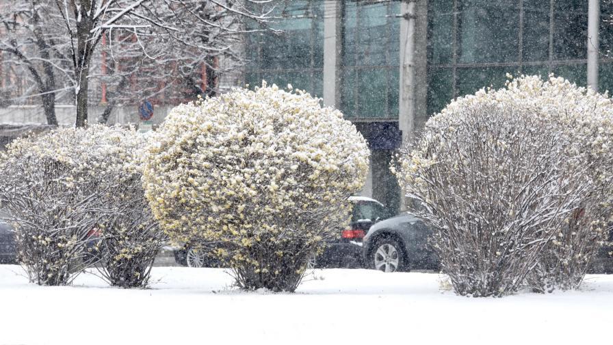 Априлски сняг в София