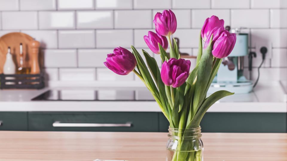 цветя пролет лалета