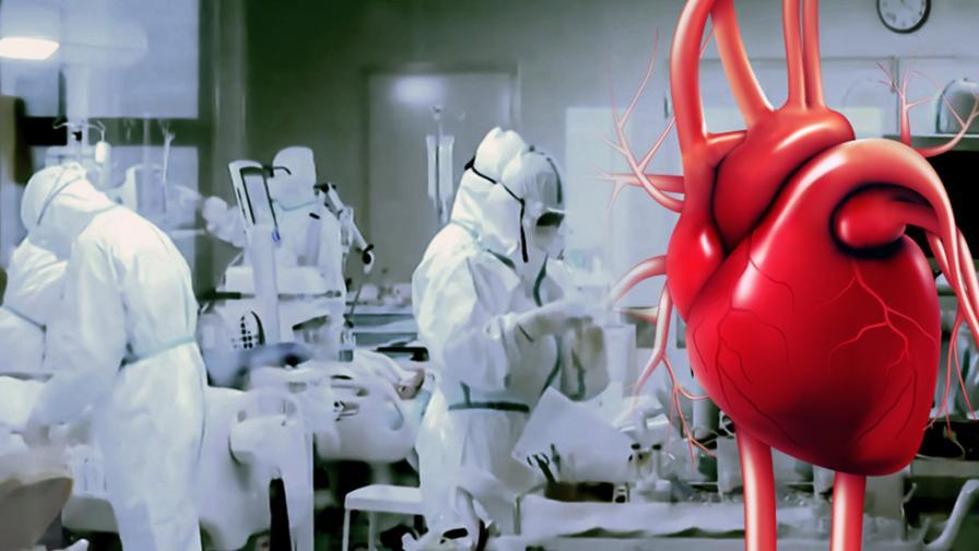 """Кардиологът от COVID отделението: """"Спасете сърцето!"""""""