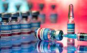 Семейство остана без сертификат за ваксинация, защо