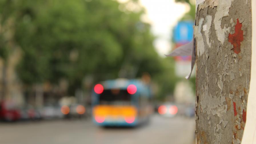 Автобус, останал без шофьор, потегли и катастрофира в София