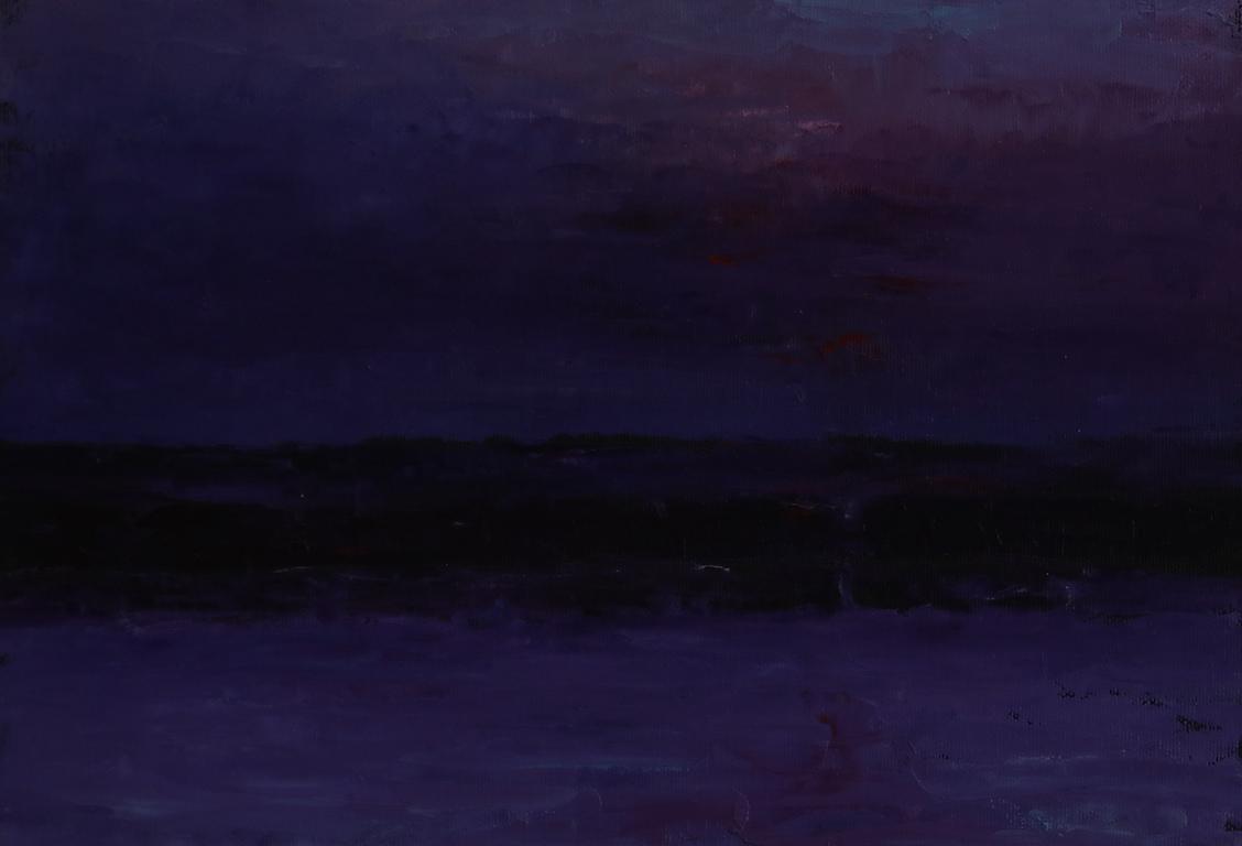 <p>Хоризонт 5,15</p>  <p>Силно реалистични очертания преминават в абстрактно-замъглени форми, денят се сменя с нощта, риби се подават от речното дъно, интензивният поглед се спира, за да усети естествения пулс на живота, но дори в най-идиличните пейзажи прозира романтичният драматизъм на търсещото съзнание, конфликтът между вечното и преходното, между природното спокойствие и интериоризираната градска динамика.</p>