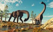 Идентифицираха нов вид динозавър - благ и общителен