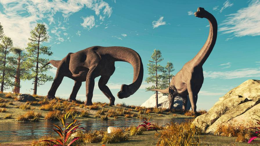 Много преди астероида, това се е случило с динозаврите