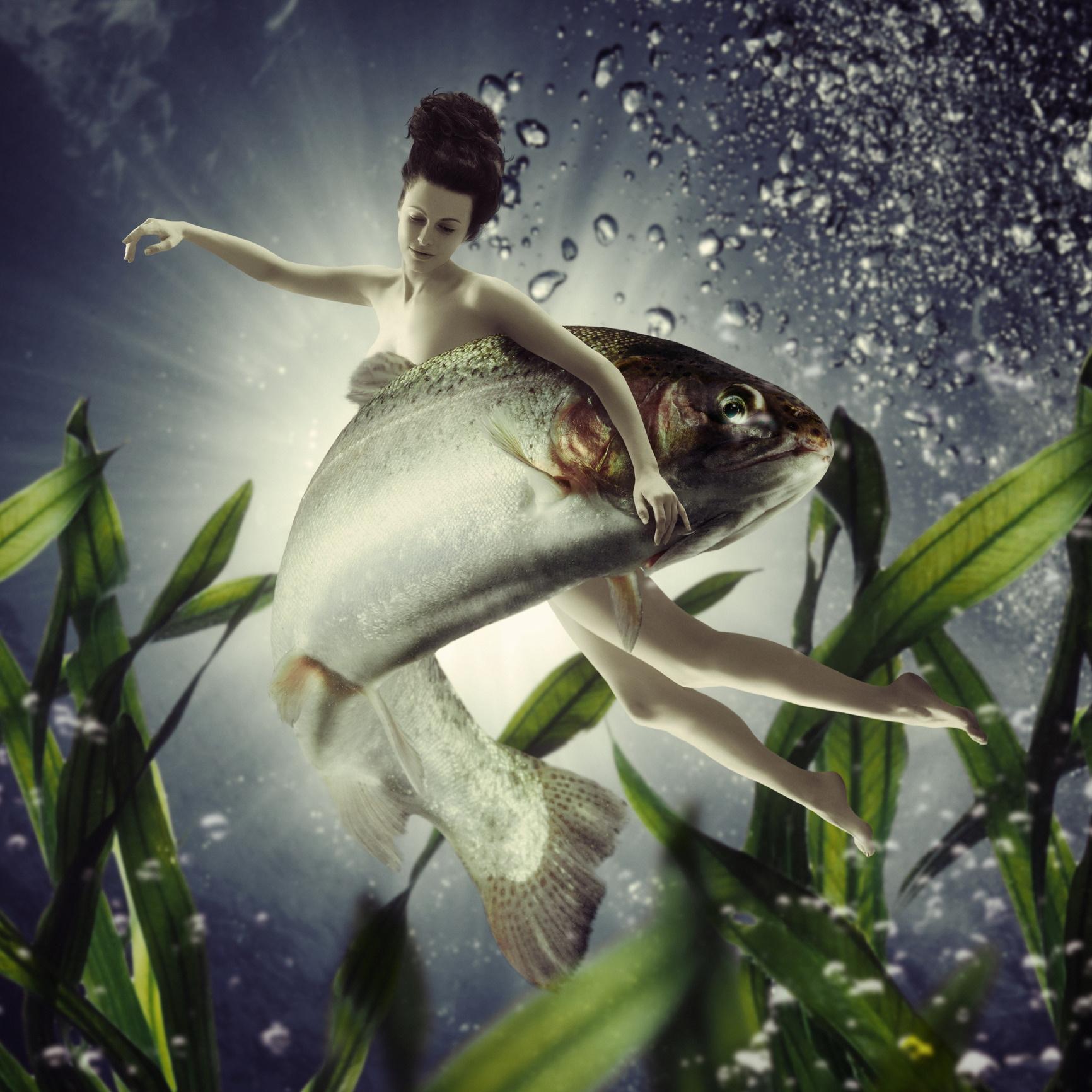 <p><strong>Риби</strong><br /> <u>Киви: </u>Най-добрият плод за Рибите пък е кивито. То действа благоприятно на техните житейски и професионални задачи, помага им да бъдат по-успешни в любовта и в развиването на личните им качества.</p>