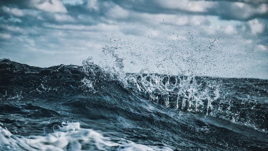 <p>Стряскащо ниво на живака на дъното на Тихия океан&nbsp;</p>