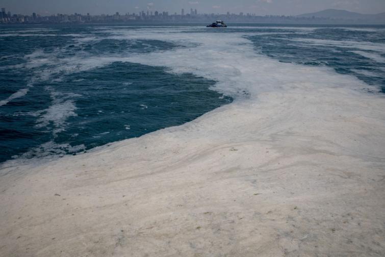 Морски сополи край бреговете на Мраморно море в Турция