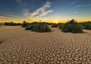 Сушата е следващата пандемия