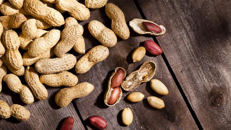 Най-добрите растителни протеини