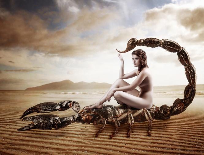 скорпион секси зодия
