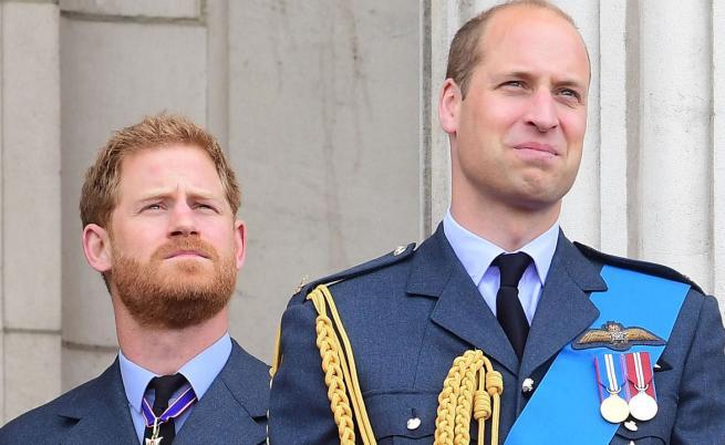 Битката на братята: Уилям защитава монархията, Хари - съпругата си