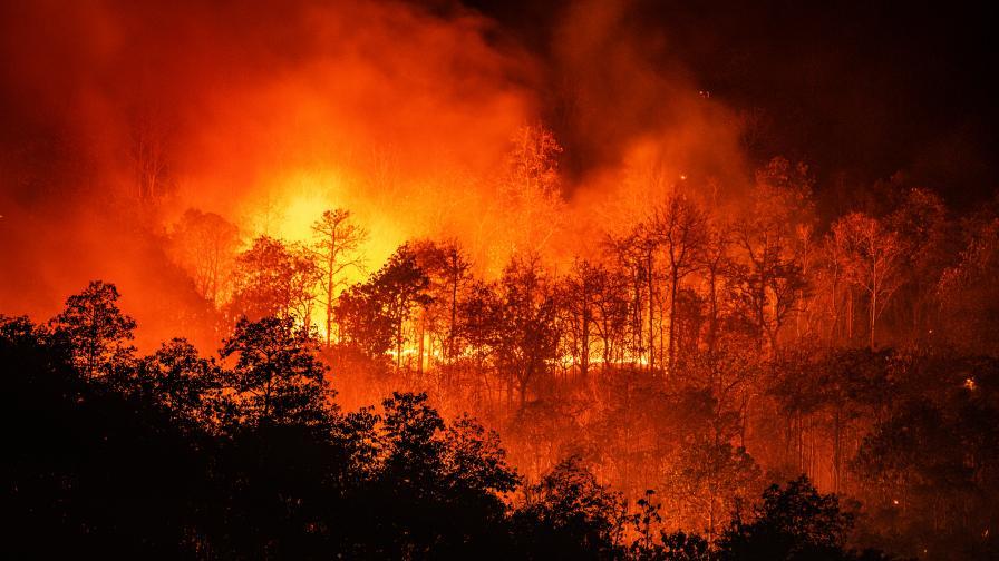 Задава се огнена ера с аномалии в климата и пожари