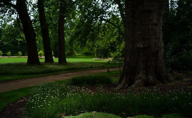 Срещу скромна сума: Можете да се разходите в градините на Бъкингамския дворец