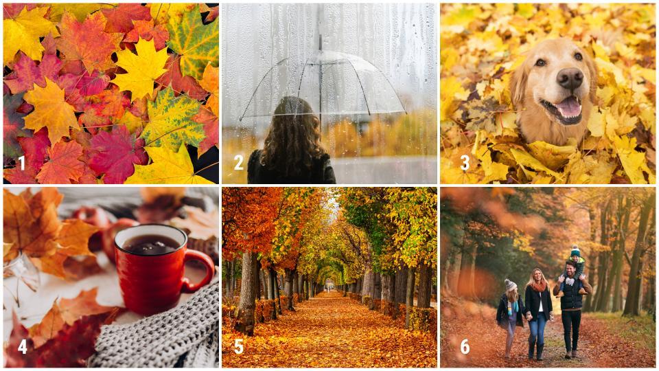 картинки есен