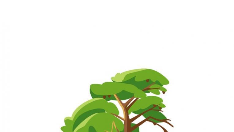 ТЕСТ: Избери есенно дърво и виж какво трябва да промениш в живота си до края на 2021 година