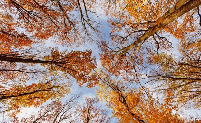 Слънчево и топло през октомври, но ще има и дъжд